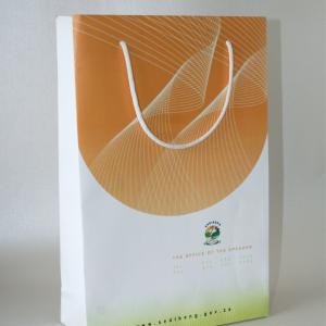 Matt paper bag